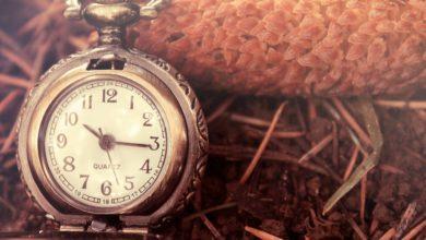 Photo of Часы в сене